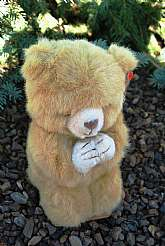 Discovered and rescused this cute little bear from a remote wilderness cave in Northern Arizona. Not sure why this bear was abondoned but is looking for a forever home!! Hope the praying bear with tag errors, hang tag is still encased in its original pla