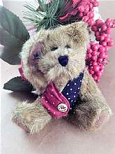 Adorable brown stuffed plush boy bear by BOYDS TJ's Best Dressed Collections Bear named I B BearyProud