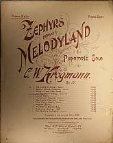 This piece of sheet music was published in 1898 by the B.F. Wood Music Company.  It was arranged for the piano by C.W. Krogmann.  This music will be a great acquisition for anyone that enjoys playing, or collecting the music of the 1890s, as well as those