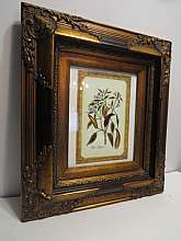 "Very good Condition, QualityMedium: OilSubject: BotanicalOriginality: OriginalFeatures: FramedBeautiful Quality Heavy Antique Wooden Gold Framed Red Pepper PrintVery good condition, with very minor wear.Measures 18""H x 16""WThank You"